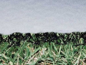 GrassProtector